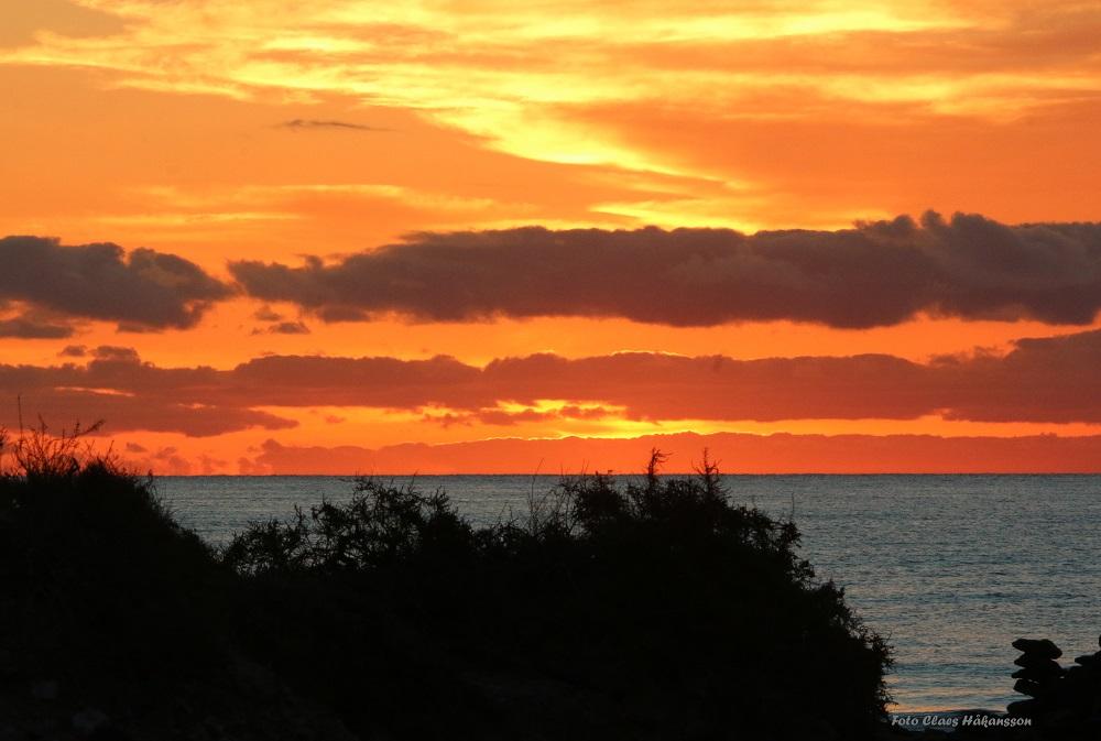 soluppgang-161120_1_1000