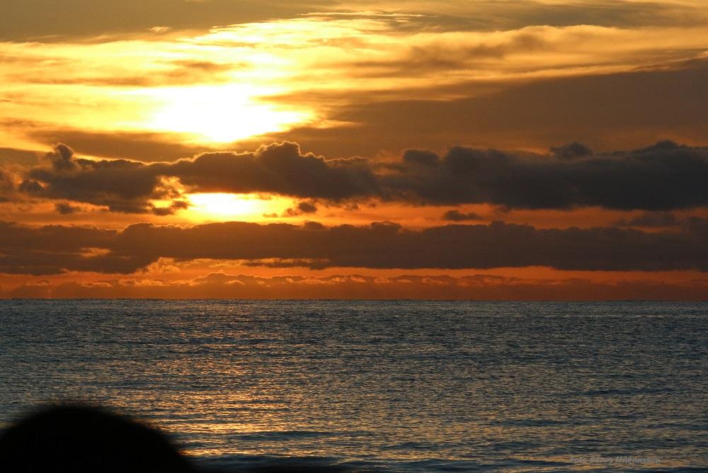 soluppgang-161120_2_1000