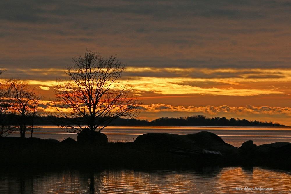 Solnedgång 171219_2_1000