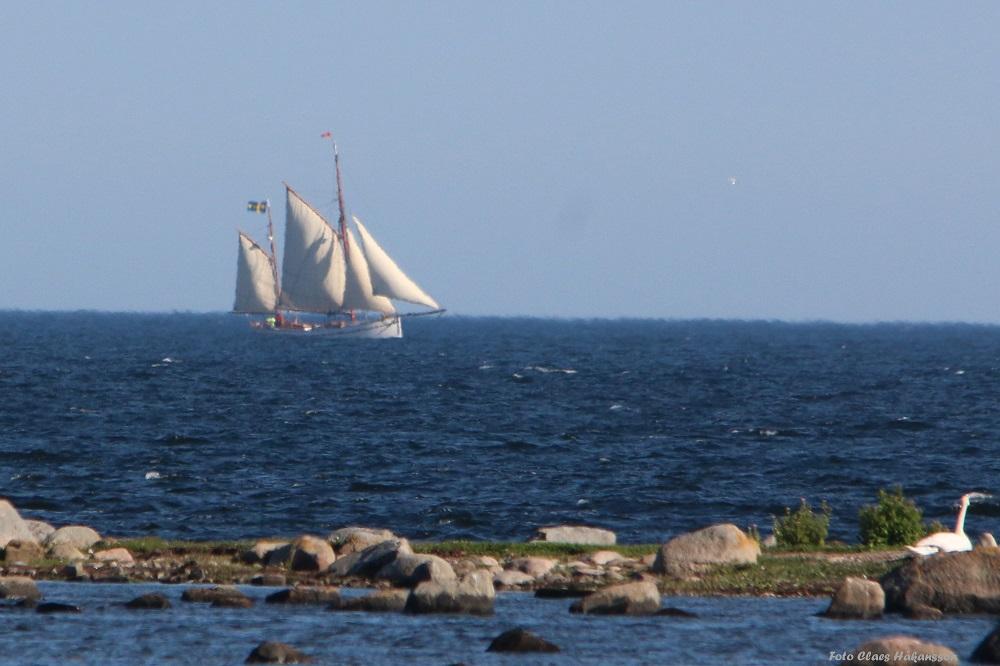 Segelbåt 160713_1000
