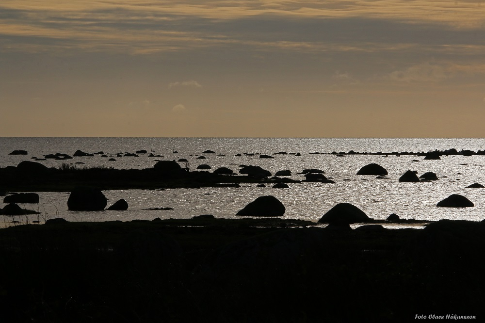 Torhamn 171106_1000